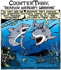 sharks against mercury